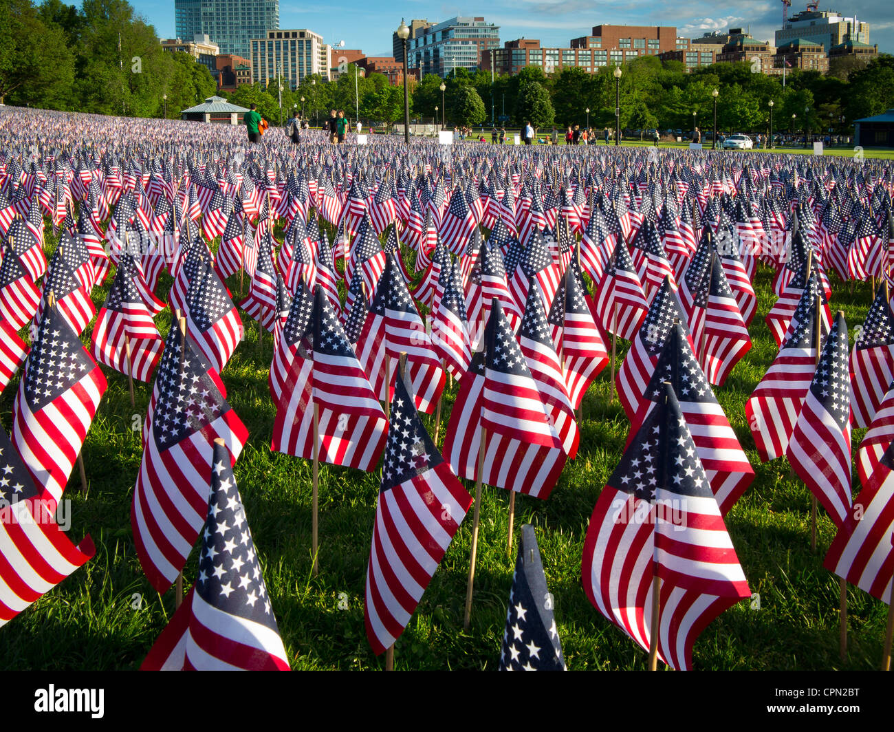 Flags on Memorial Day in Boston Commons - Stock Image