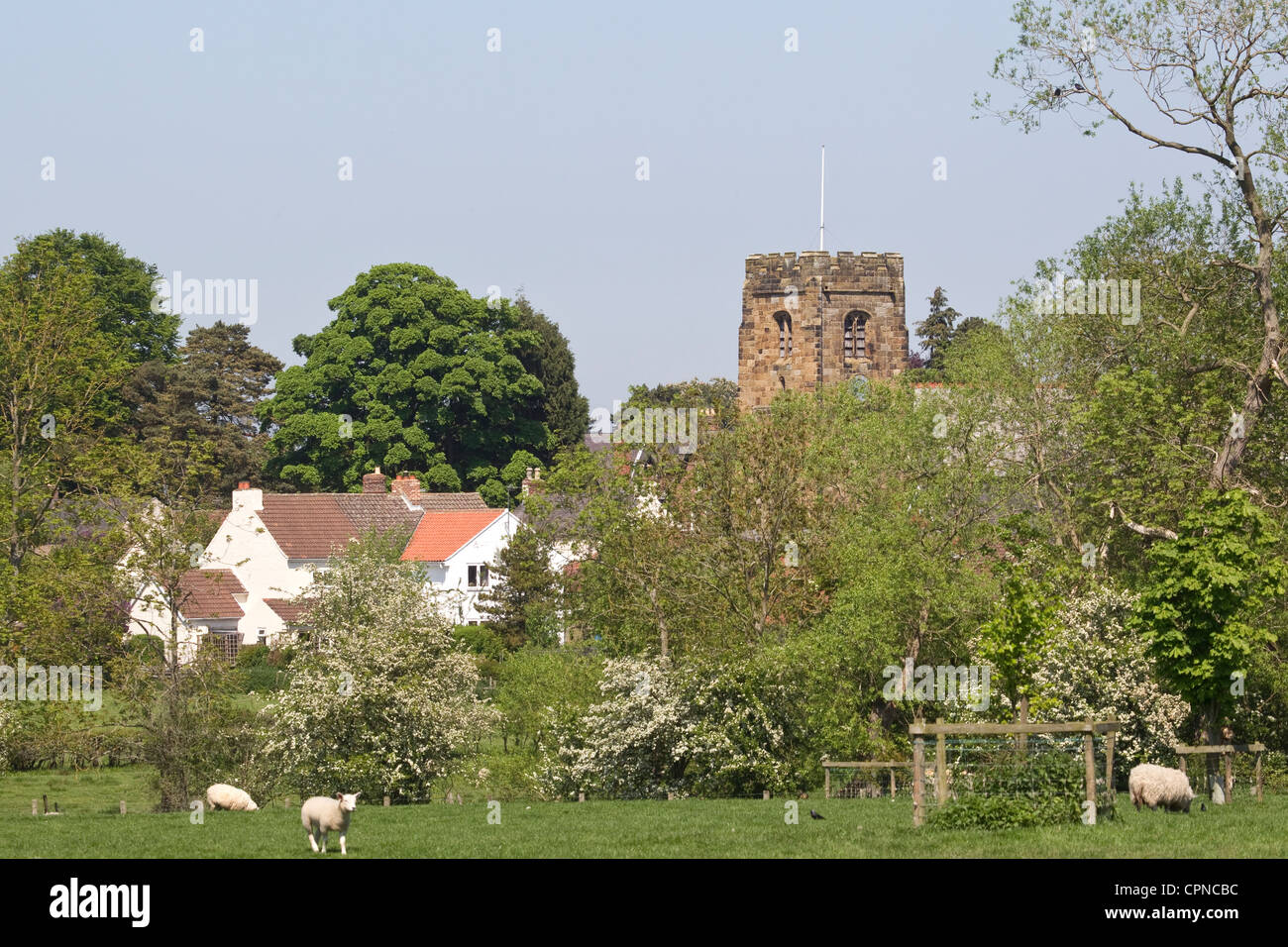 Kirby Wiske village in North Yorkshire situated on the River Wiske close to Thirsk and showing  St John the Baptist's - Stock Image