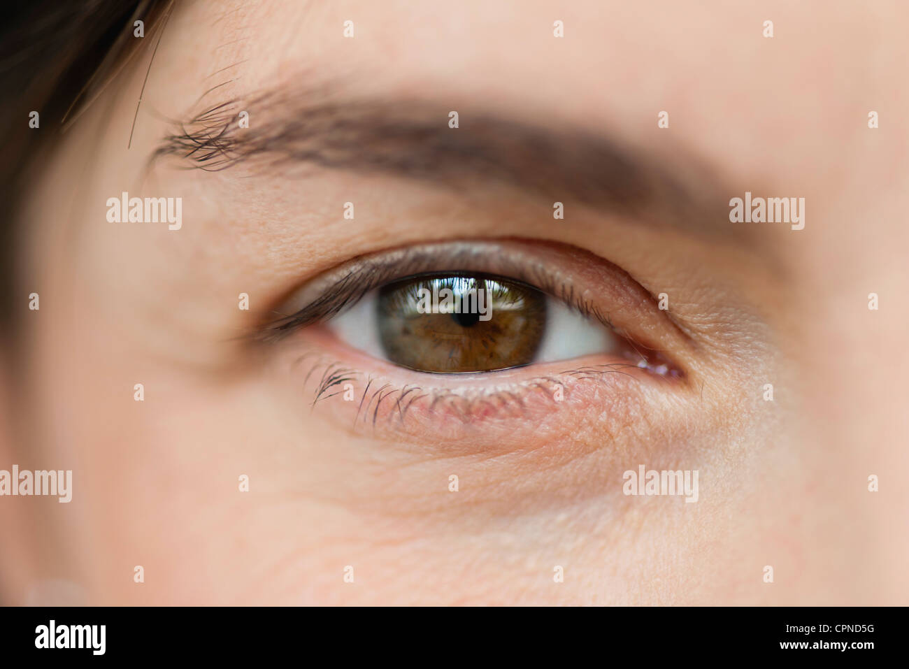 Close-up of woman's eye, cropped - Stock Image