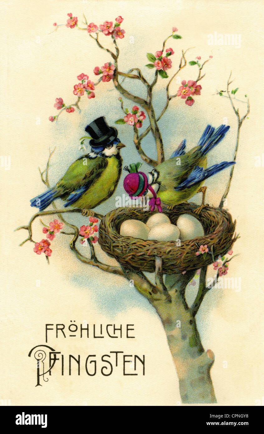 Kitsch Greeting Cards Happy Pentecost Bird Nest Postcard