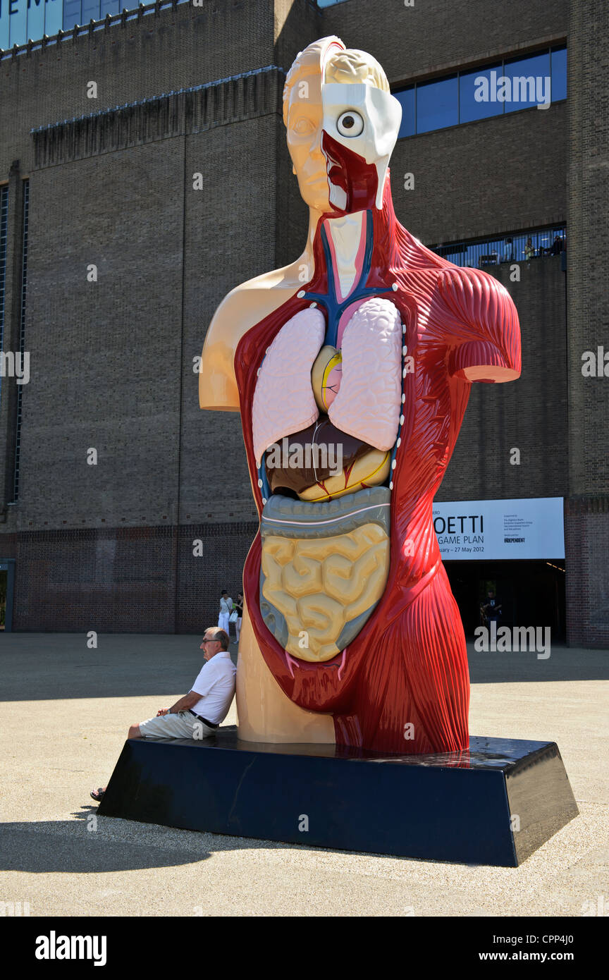 Human Anatomy Model, Tate Modern, London, United Kingdom. - Stock Image