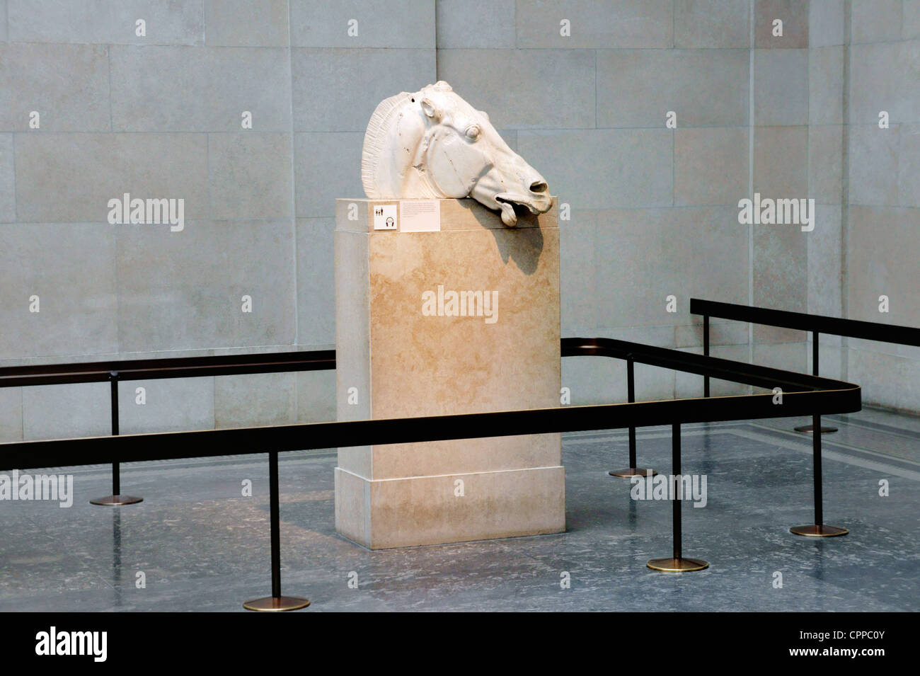 Marble head of chariot horse of Greek goddess Selene from east pediment of the Parthenon. Elgin Marbles. British - Stock Image