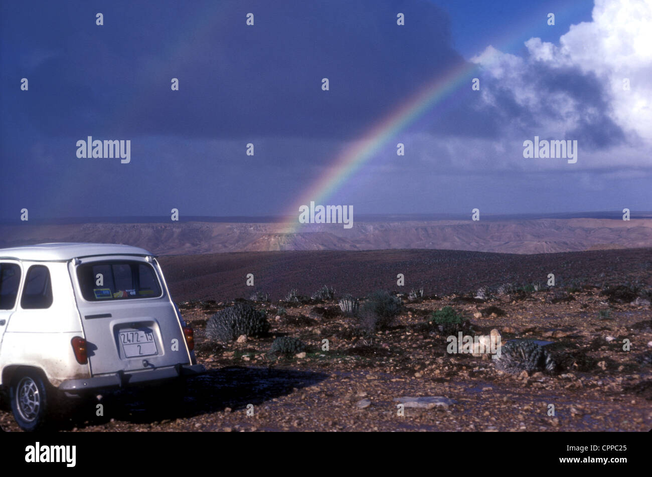 Renault 4 in the Western Sahara of Morocco with euphorbia and a rainbow - Stock Image