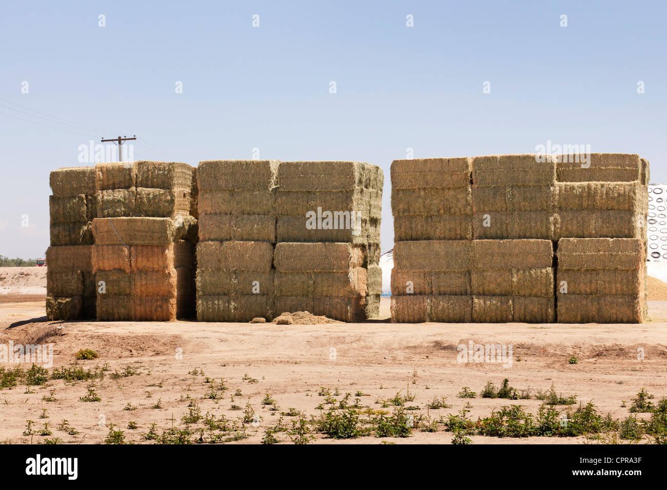 Stacked hay bales - California USA - Stock Image