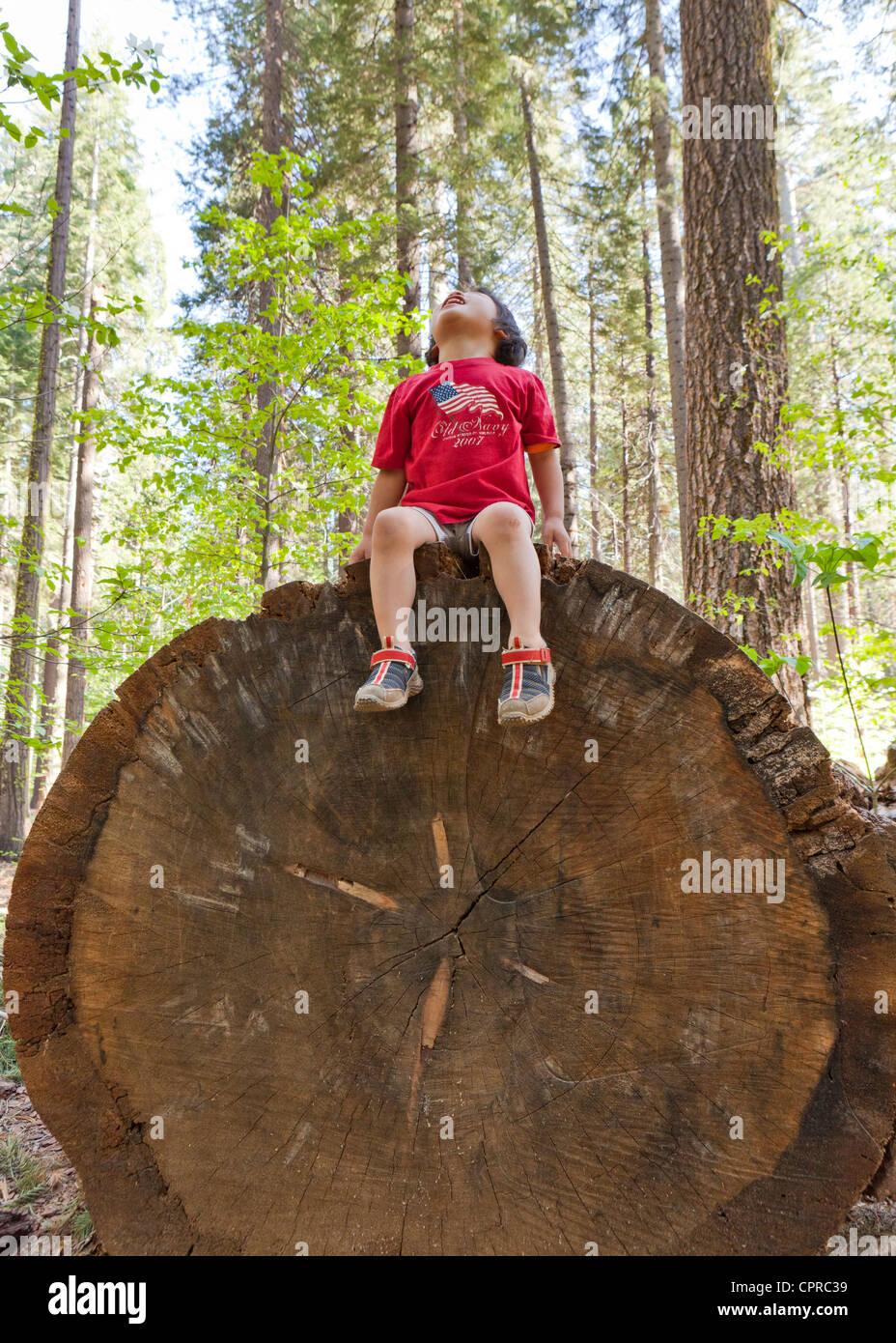 Boy sitting on large log - Stock Image