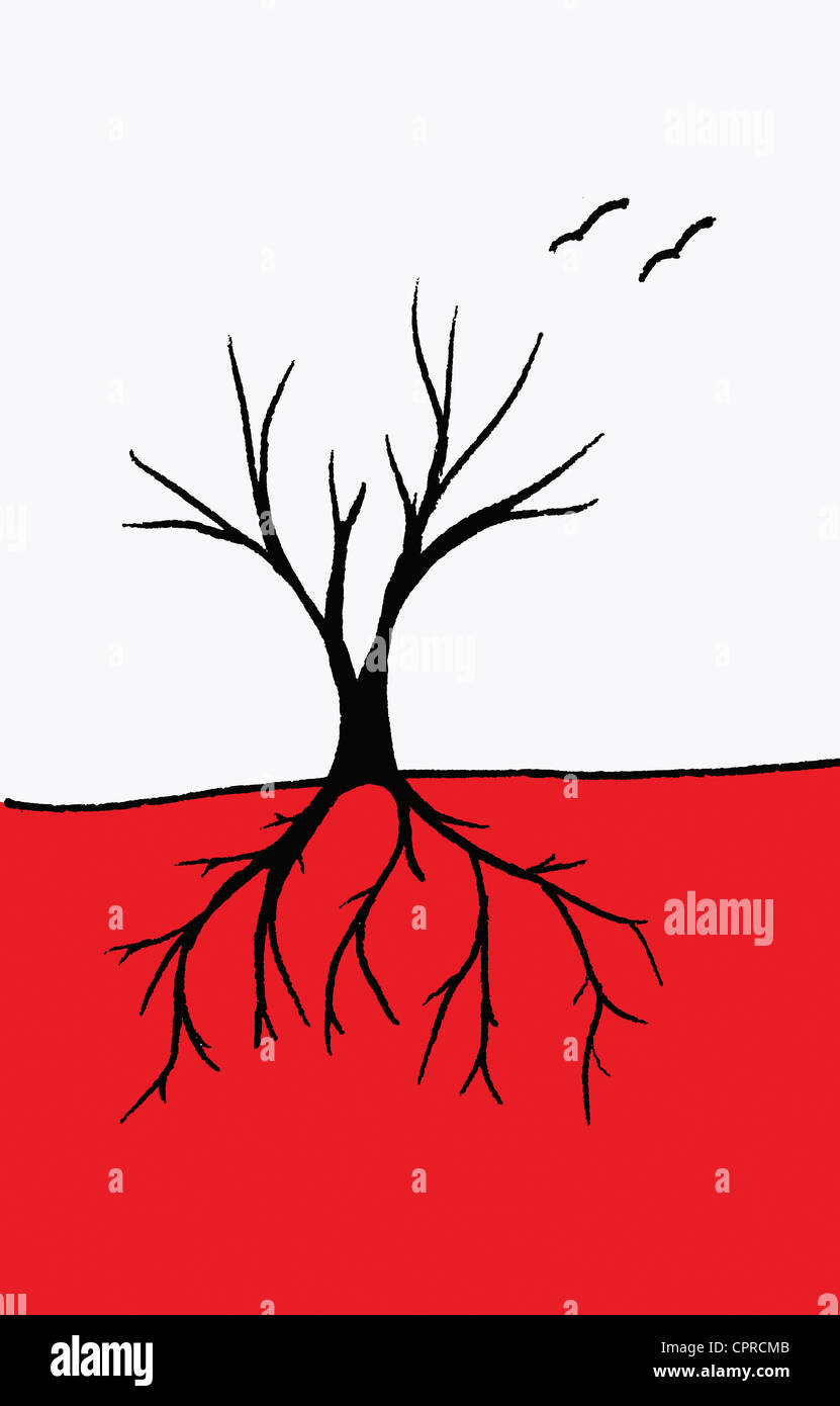 Roots and branches of tree or a tree with blood vessels. - Stock Image
