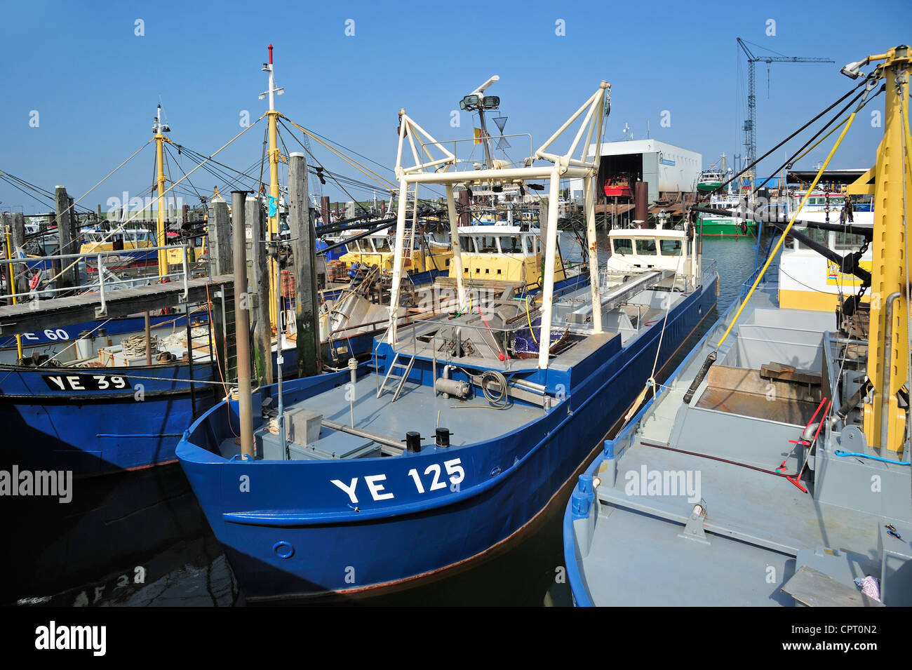 Fishing boats / Mussel cutters in the harbour of Yerseke along the Oosterschelde / Eastern Scheldt, Zealand, the - Stock Image