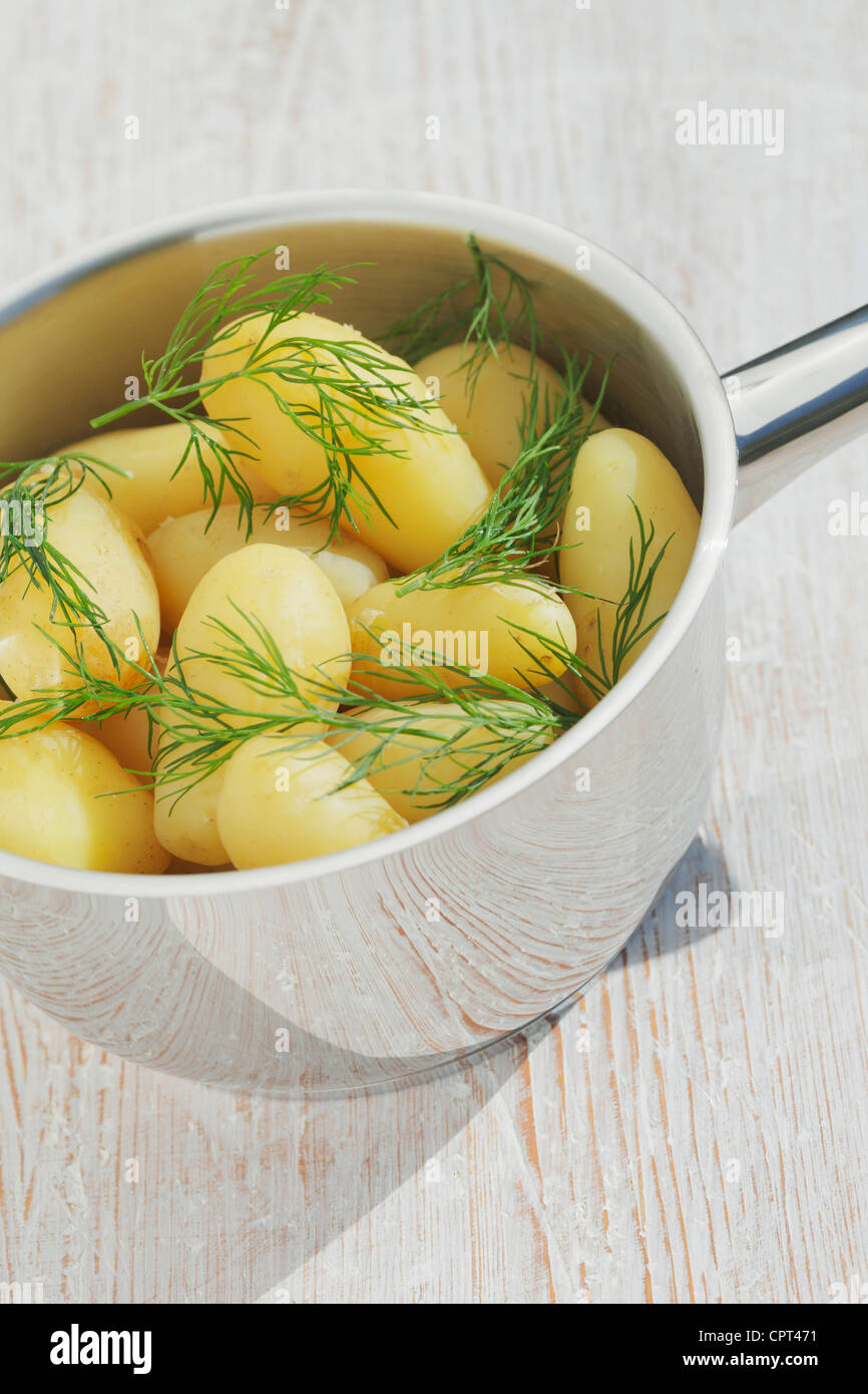 New potatoes with dill in steel pot - Stock Image