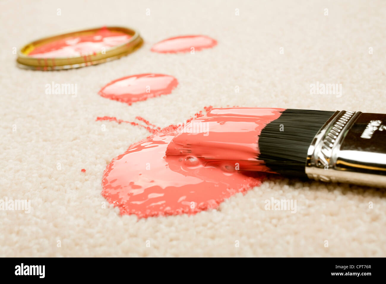 Pink paint spilled on cream coloured carpet with brush. - Stock Image