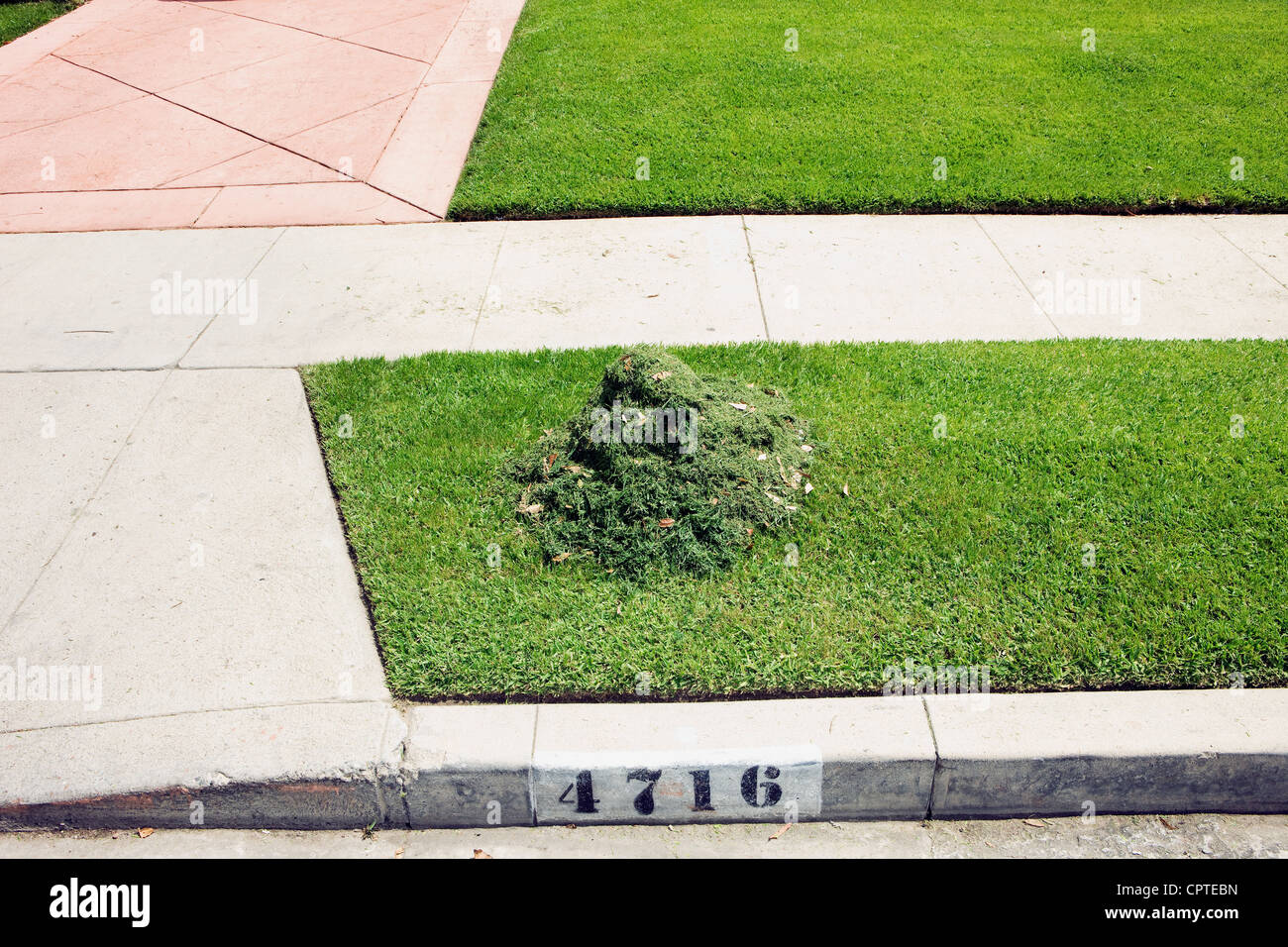 Heap of cut grass on suburban pavement - Stock Image