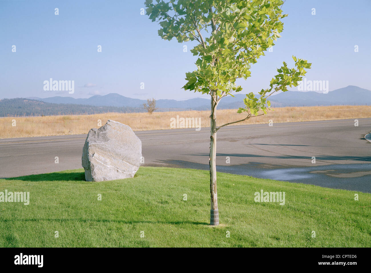 Rock on grass by suburban road - Stock Image