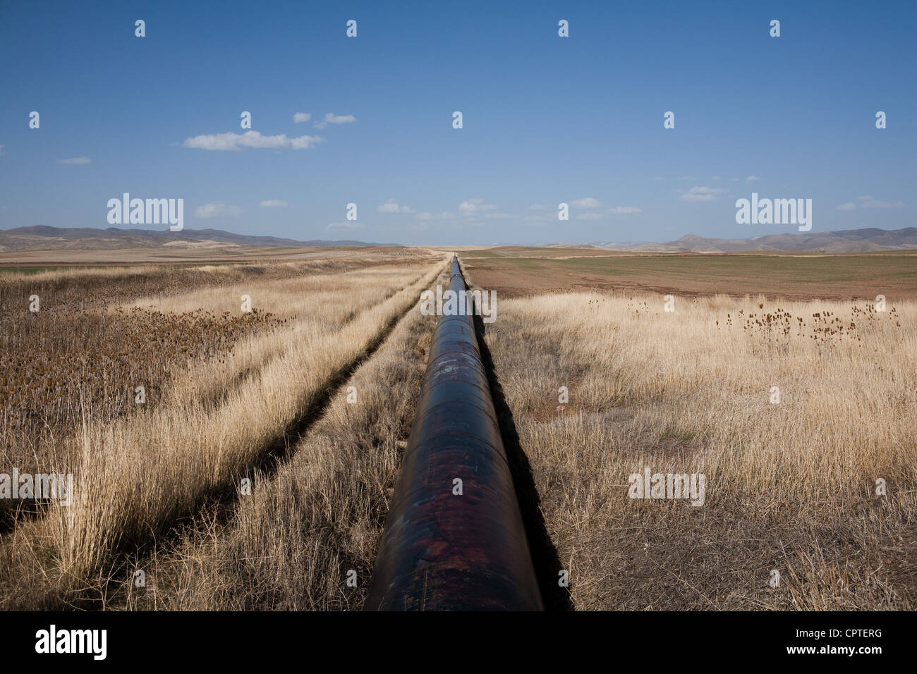 Gas pipeline in field, Idaho, USA - Stock Image