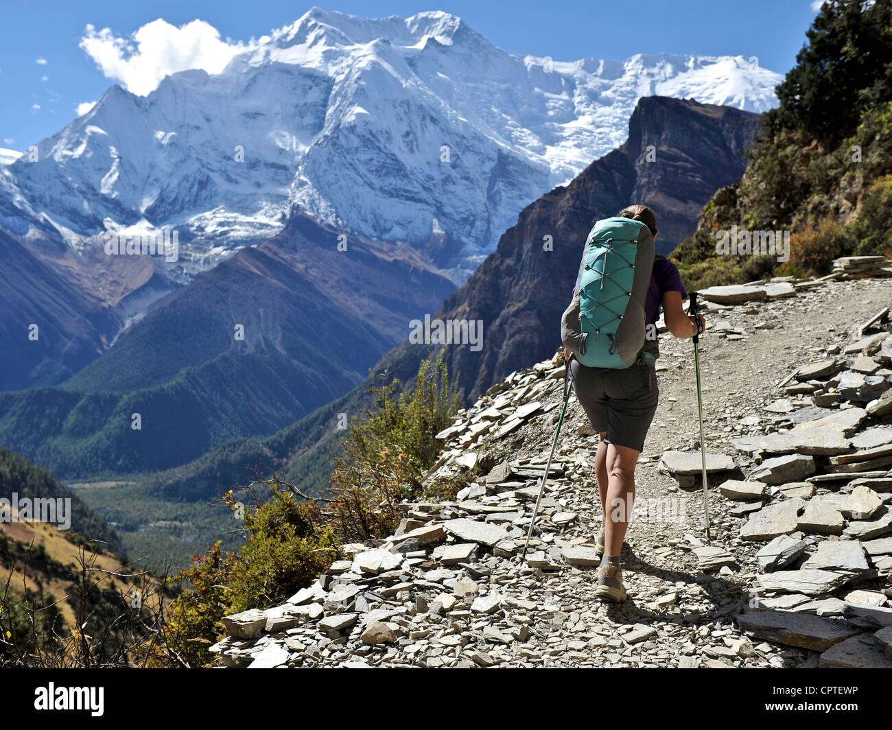 Female trekker in Manang District, Nepal - Stock Image
