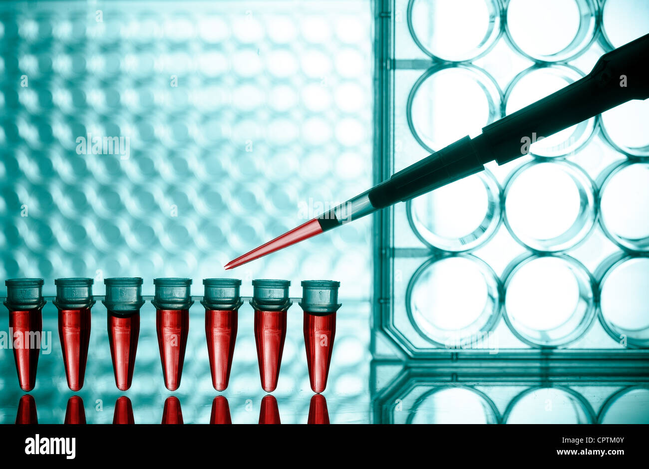 Microtubes and micropipet lab test - Stock Image