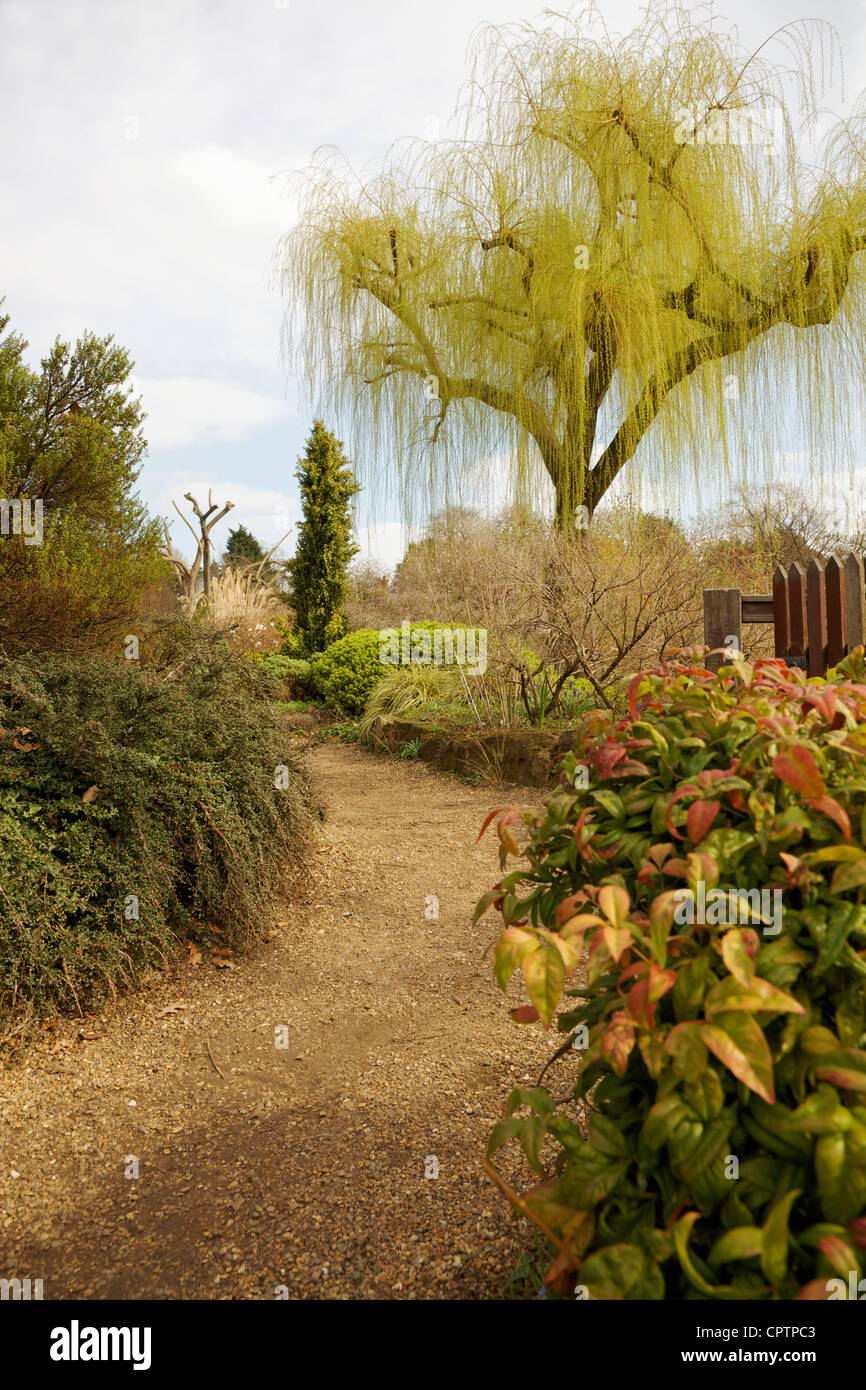 The inner circle of Regent's Park, Queen Mary's Gardens, London, UK. - Stock Image