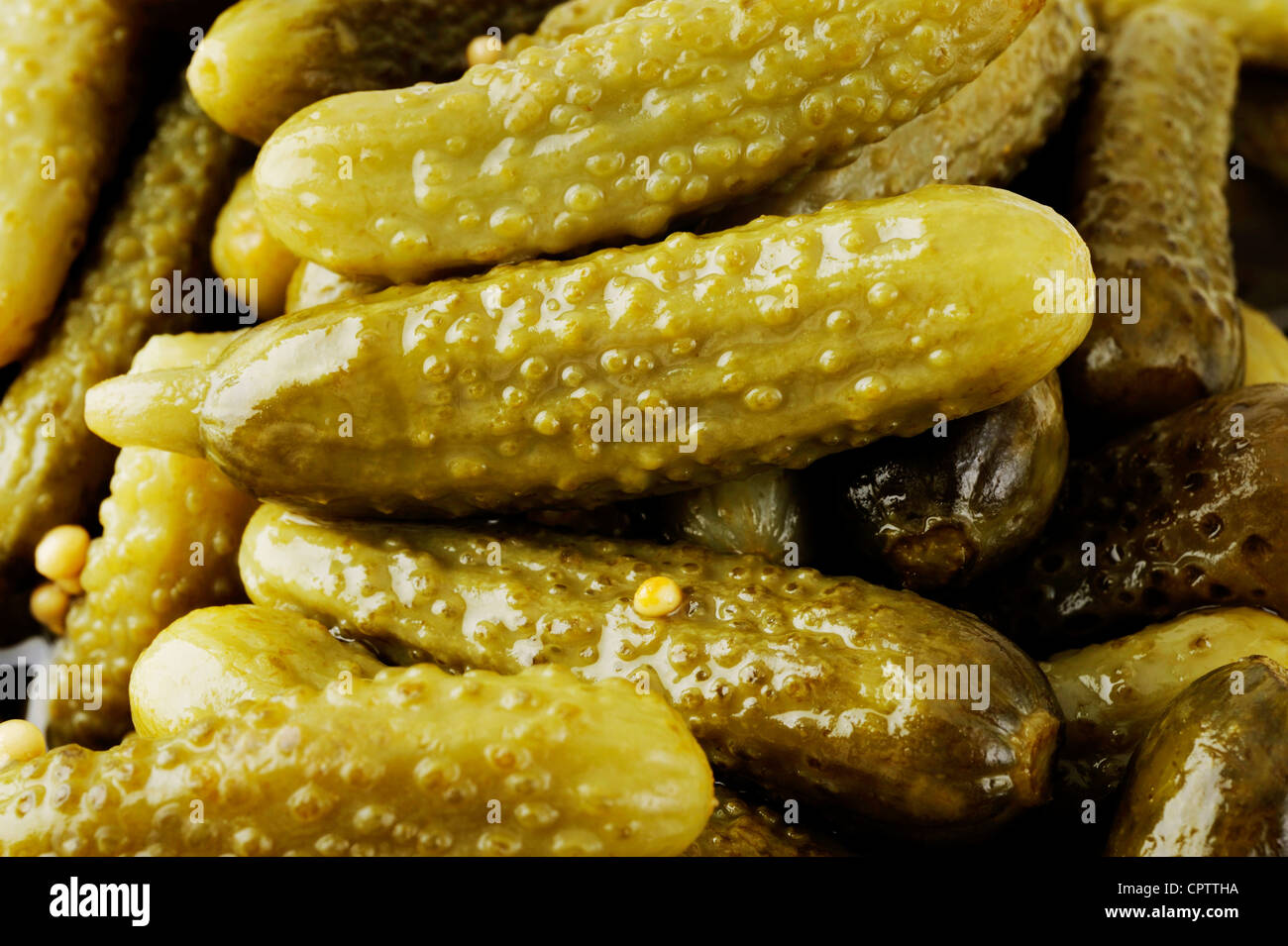 pickle cucumber - Stock Image