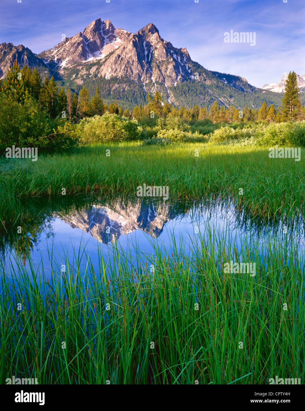 Sawtooth National Recreation Area, ID Morning sun on Mount McGown with reflections on a grassy wetland pond - Stock Image