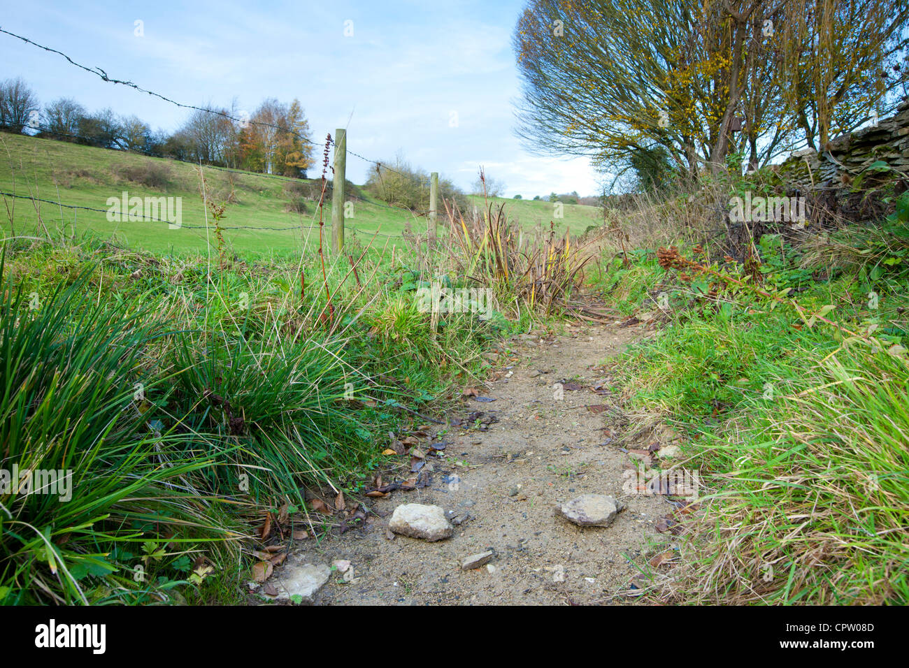 Dry weather causes Cotswolds stream to run dry, Swinbrook, Oxfordshire, UK - Stock Image
