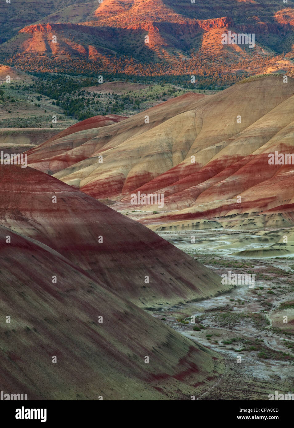 John Day Fossil Beds National Monument, OR: Patterns and stratified colors in the volcanic formations of the Painted - Stock Image