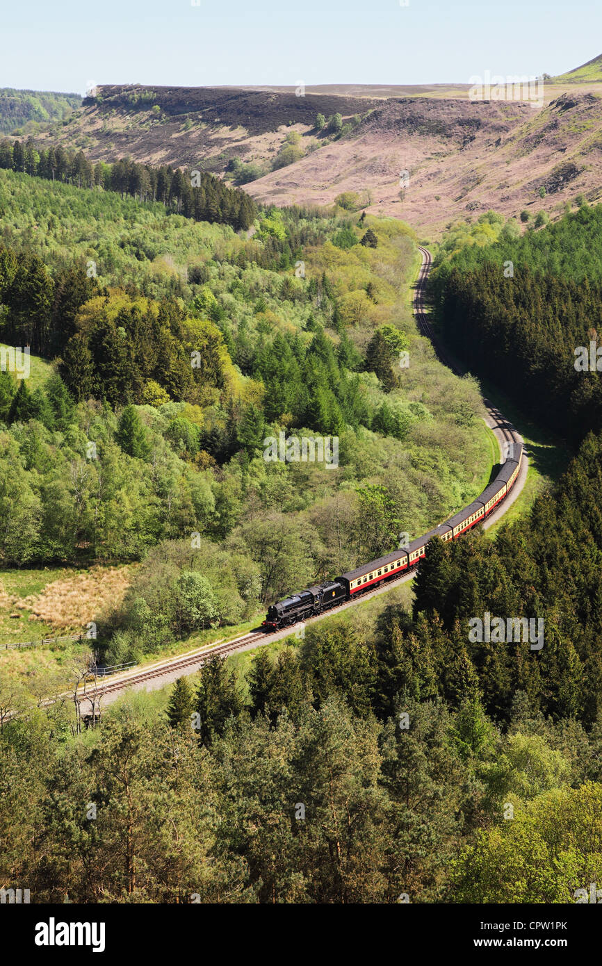 A steam train on the NYMR threading through Newtondale glaciated valley taken from Skelton Tower, North Yorkshire - Stock Image