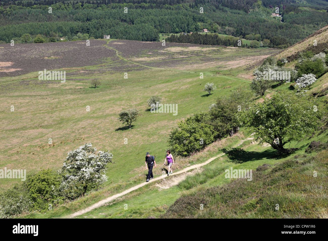 Two walkers on the North Yorkshire Moors near to Skelton Tower, North Yorkshire Moors, England - Stock Image