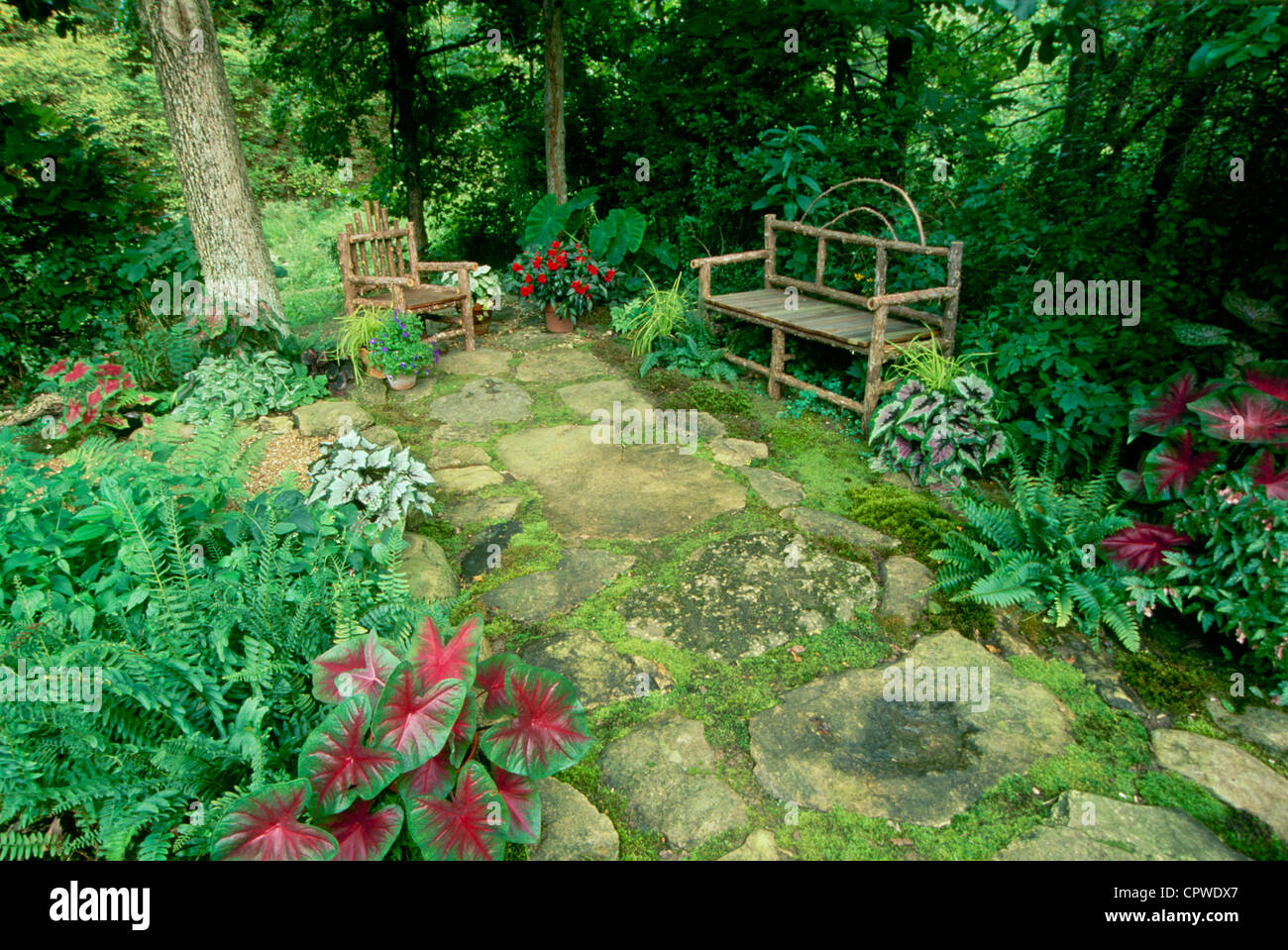 Shade Garden With Handmade Rustic Furniture And Colorful Caladium Stock Photo Alamy