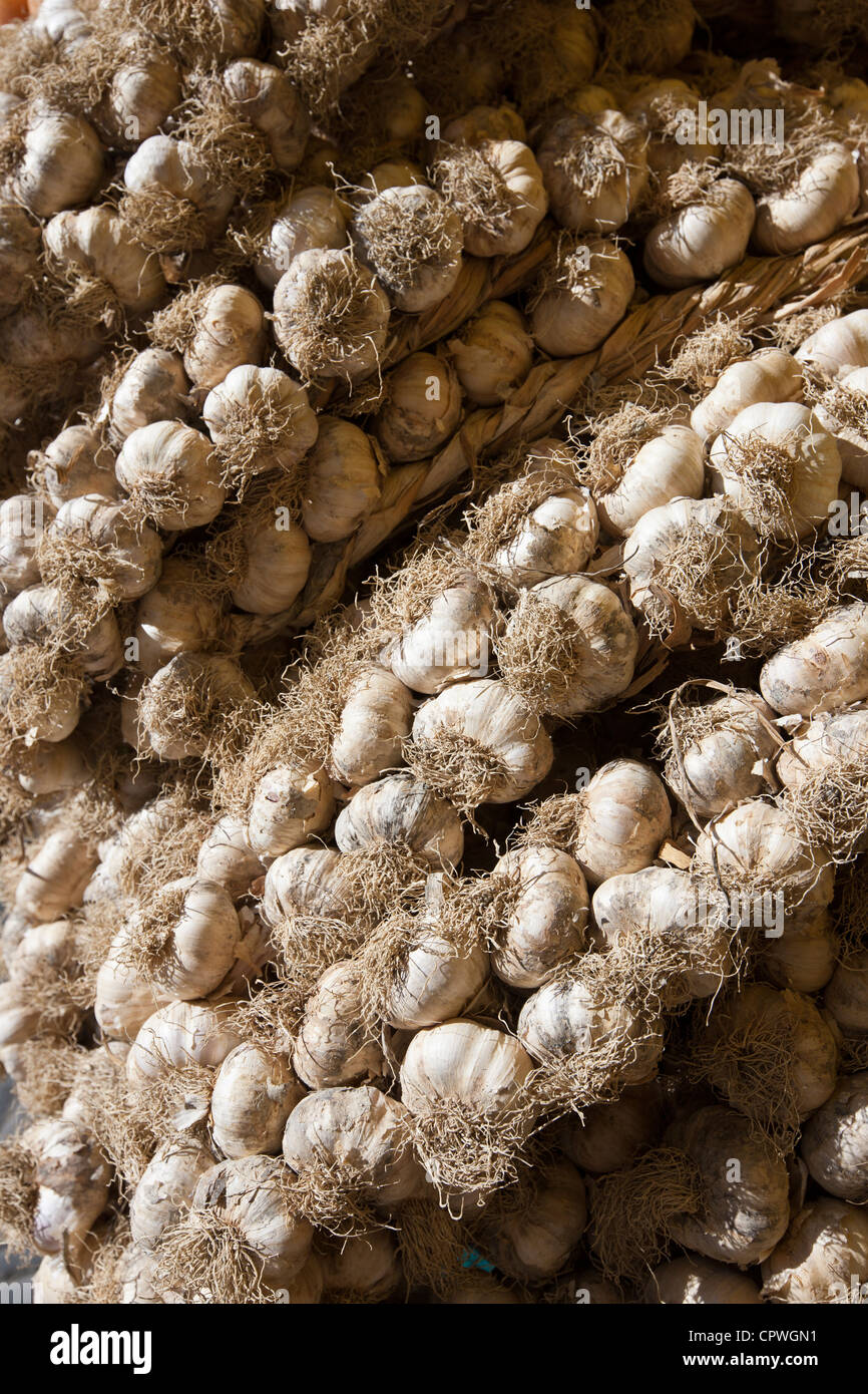 Garlic plaits, Allium sativum, on sale in food market in Pienza, Tuscany, Italy - Stock Image