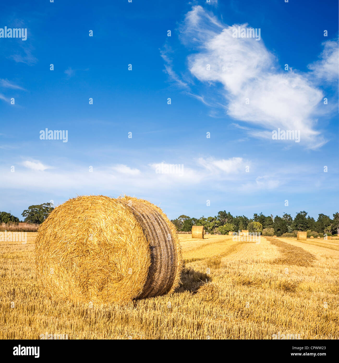 Hay bales under a cerulean blue sky means summer in Canterbury, New Zealand. - Stock Image