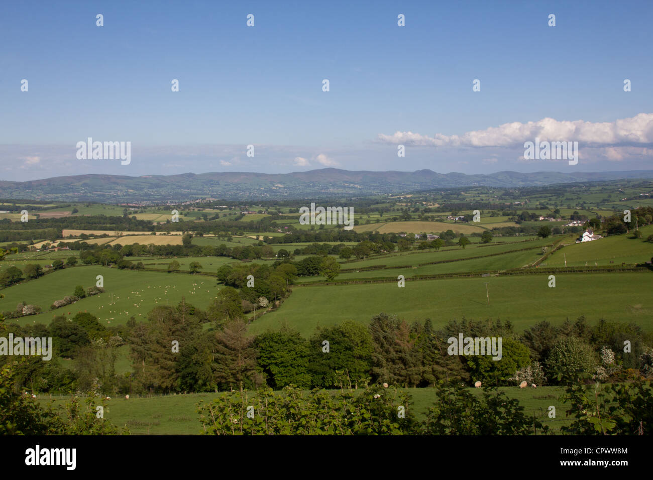 General view of the Vale of Clwyd on a sunny day - Stock Image