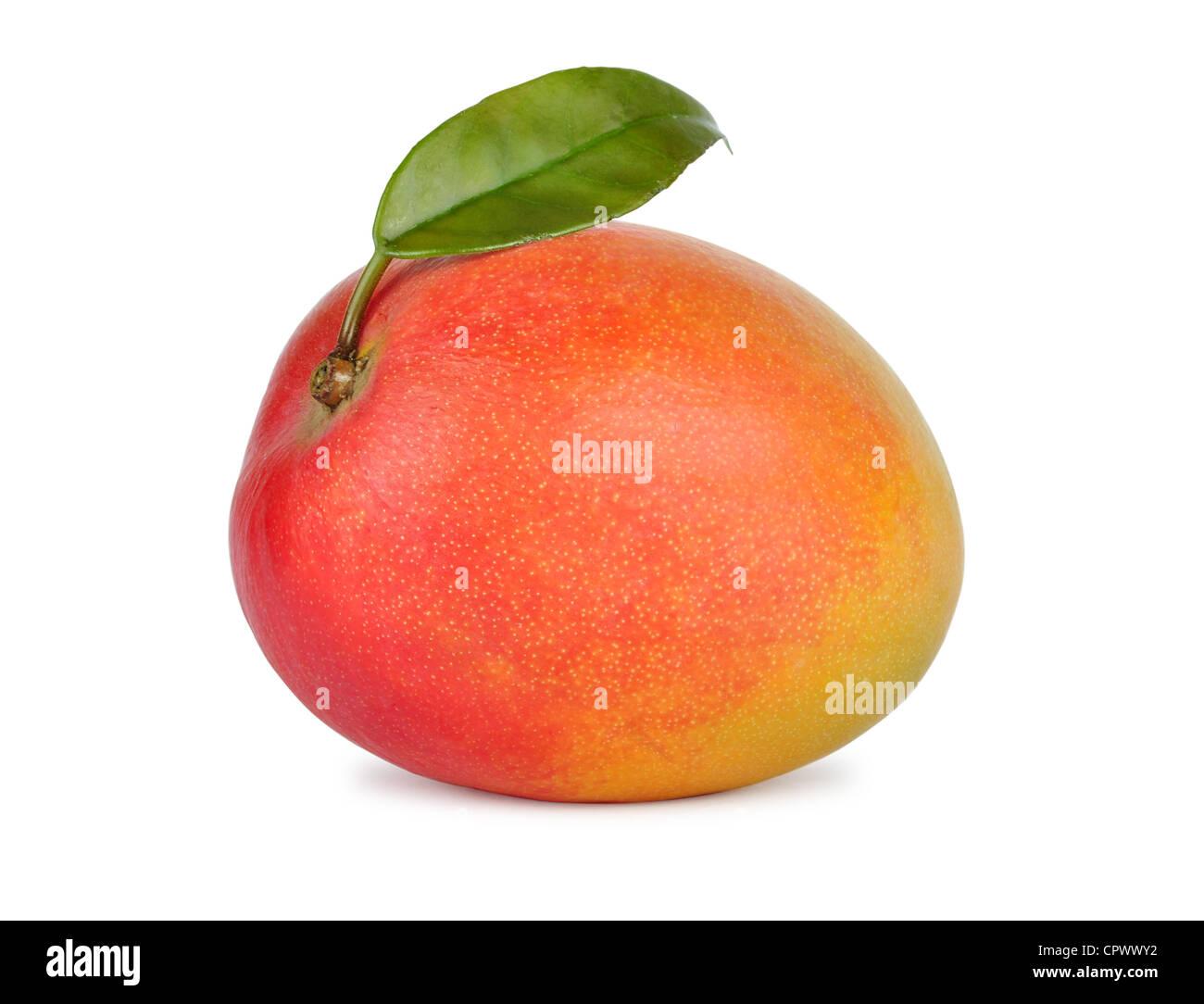 Ripe fresh mango fruit isolated on white background - Stock Image