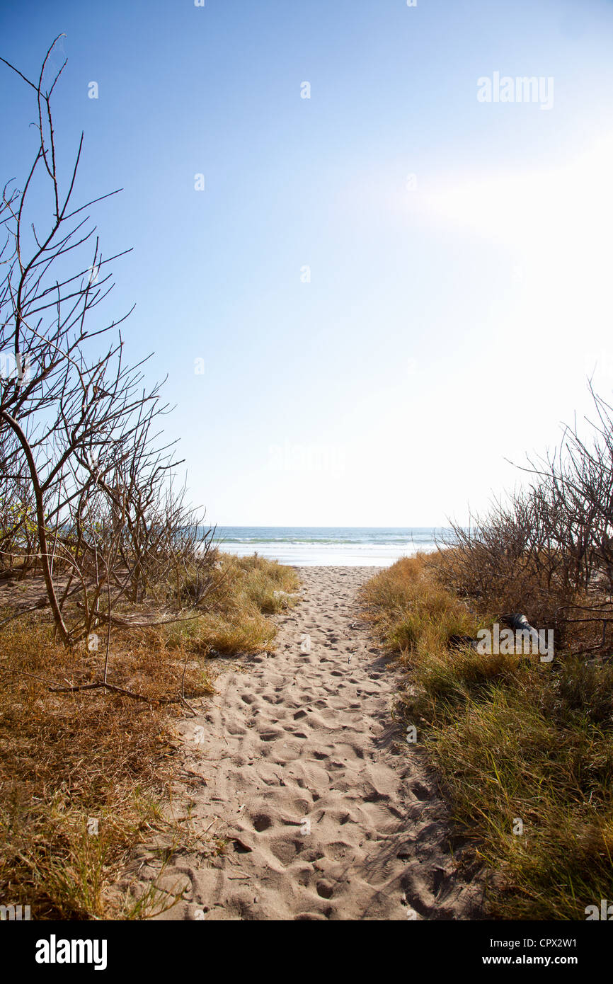 Sand path to beach, Playa Grande, Santa Cruz, Costa Rica - Stock Image
