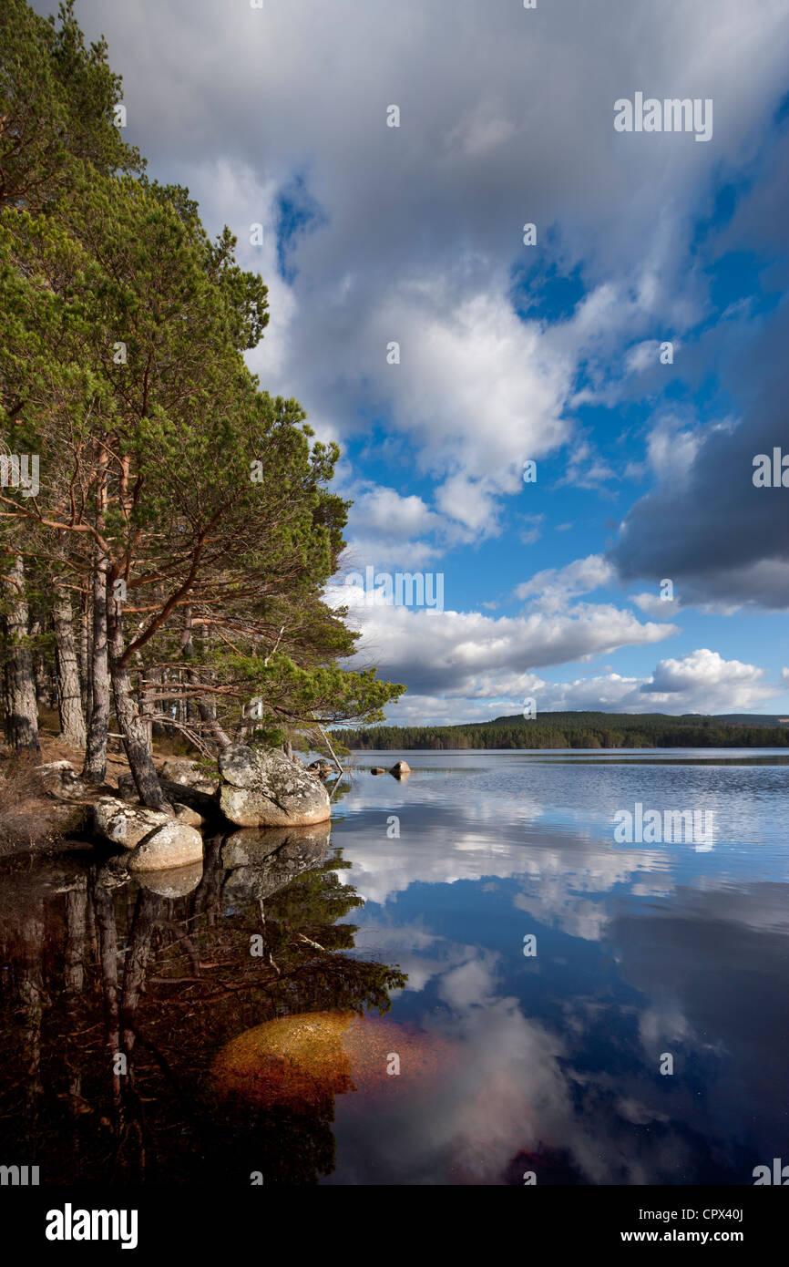 Loch Garten, Strathspey, Cairngorms National Park, Scotland Stock Photo