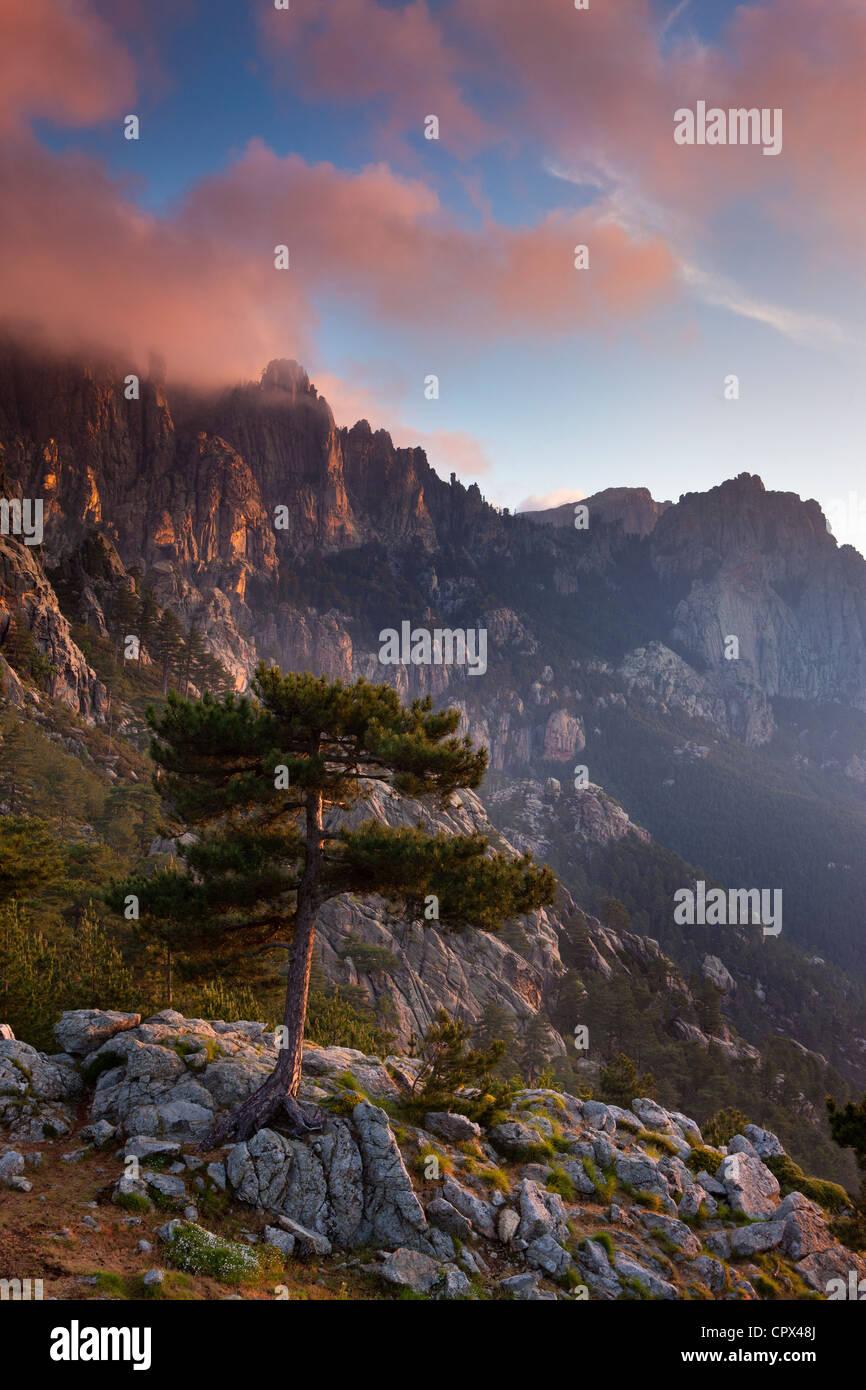 the Col de Bavella at dawn, Corsica, France Stock Photo