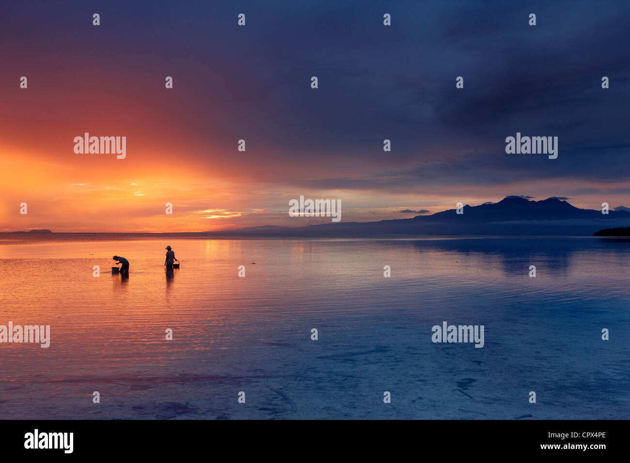 women collecting shells at dusk, Siquijor, The Visayas, Philippines - Stock Image