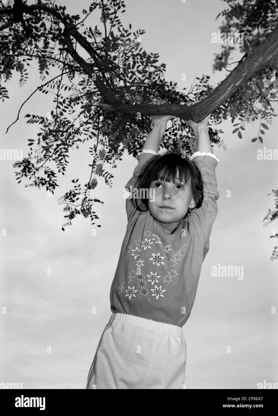 little girl and the tree limb - Stock Image