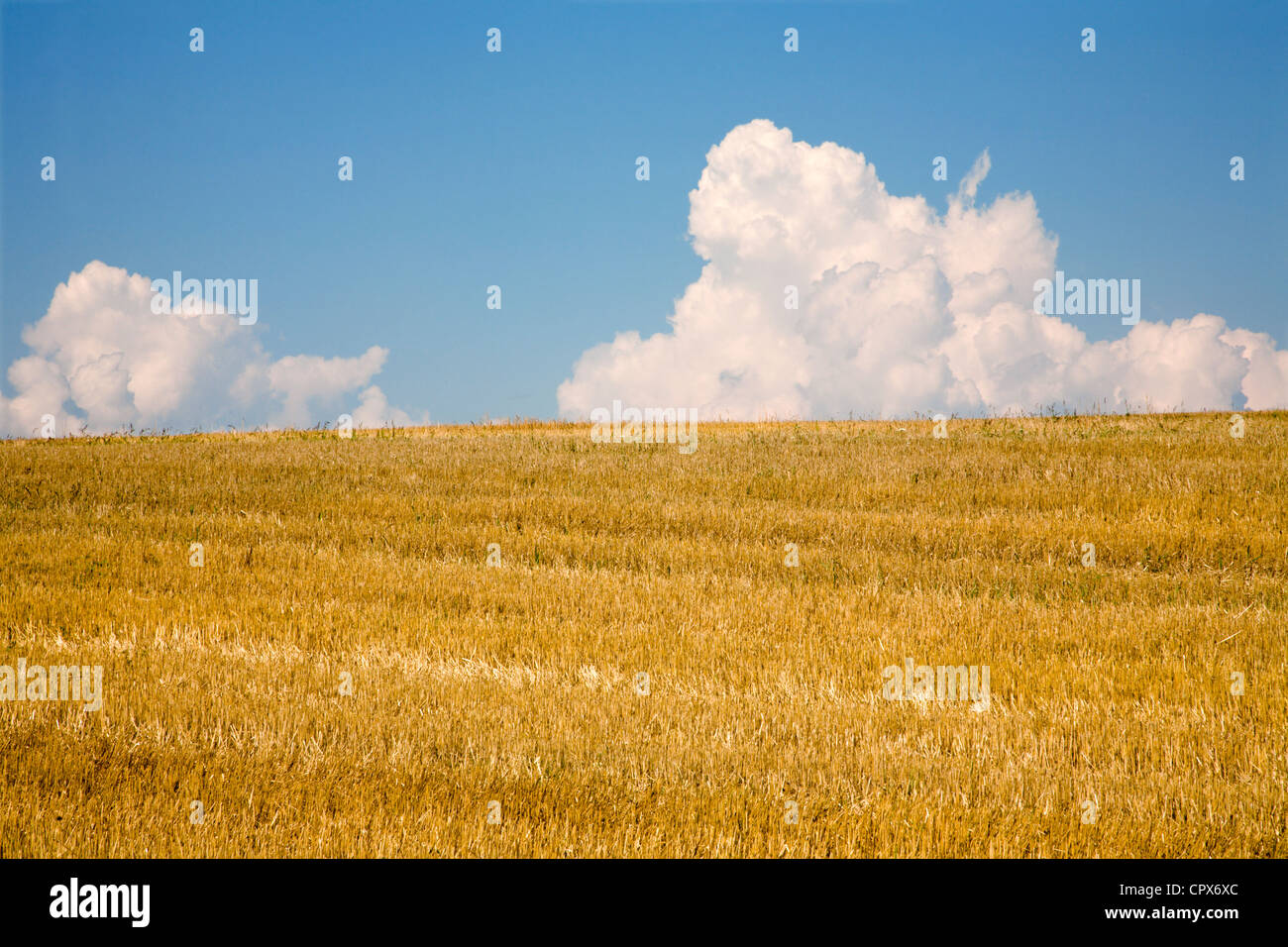 field after harvest and clouds - Stock Image