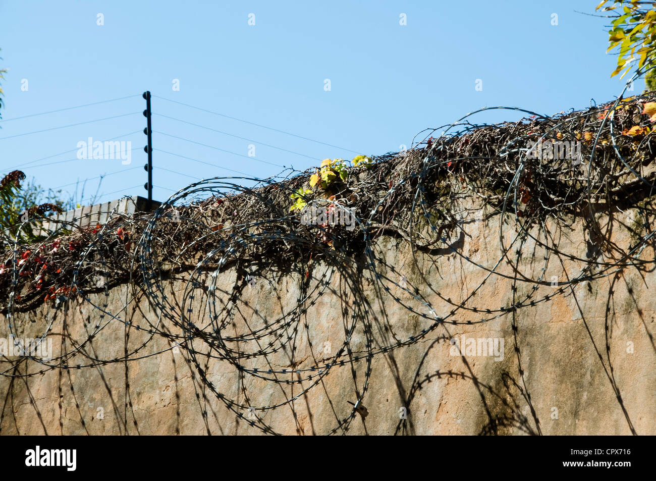 Closeup of a wall with electric fencing and barbed wire - Stock Image