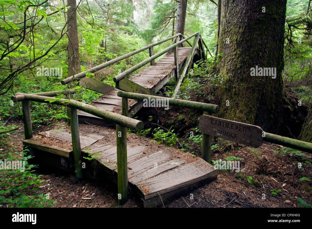 Cantilever Bridge on Trail to Shi Shi Beach - Neah Bay, Washington, USA - Stock Image