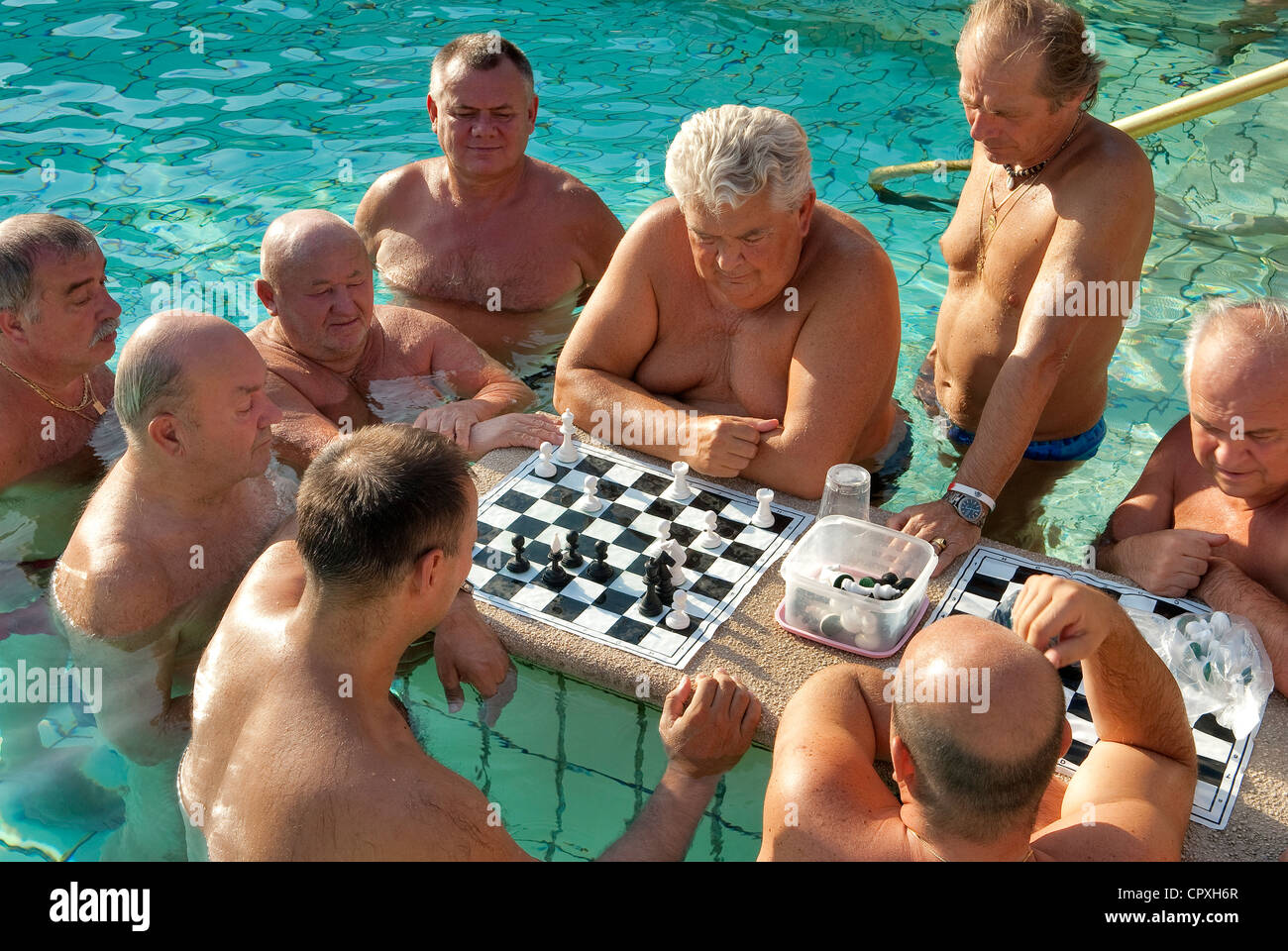 Hungary, Budapest, chest players, in one of the outside swimming pools in the Széchenyi Medicinal Bath - Stock Image