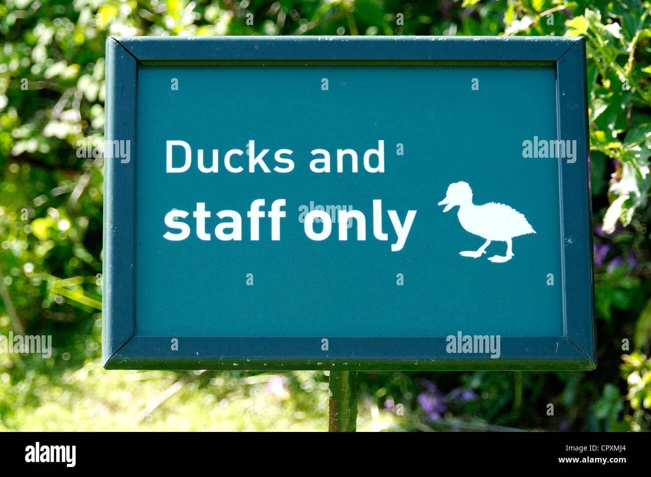 A humourous sign at a bird reserve - Stock Image