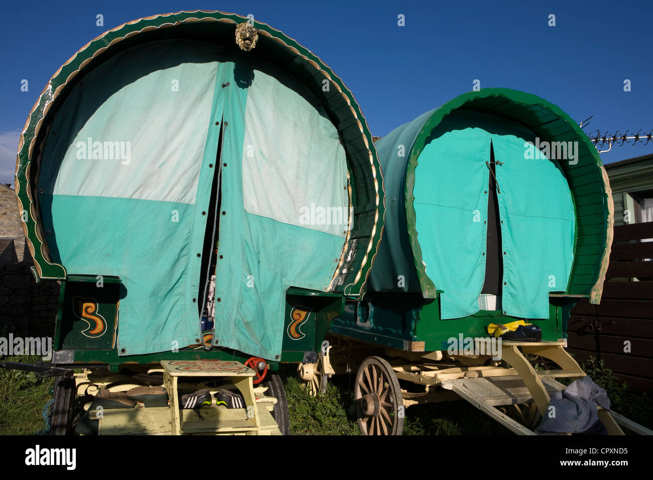 Horses, Wagons and equipment belonging to travelers attending the annual Appleby horse fair, Cumbria Uk Stock Photo