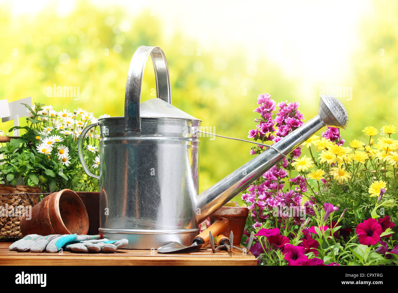 Outdoor gardening tools and flowers - Stock Image