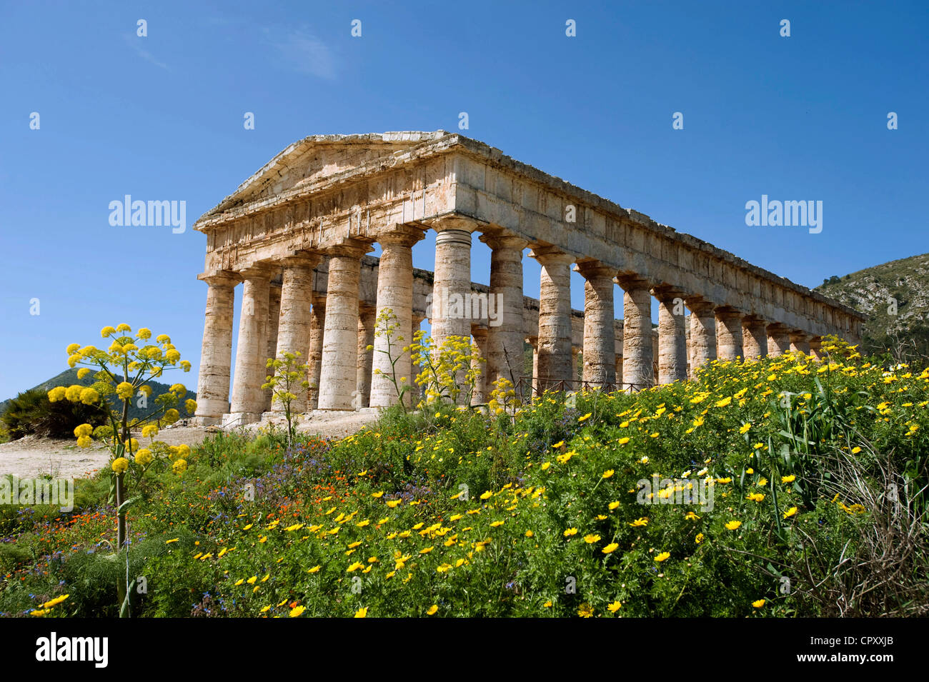 Italy, Sicily, Segesta archeological site, Doric temple built in 430 BC - Stock Image