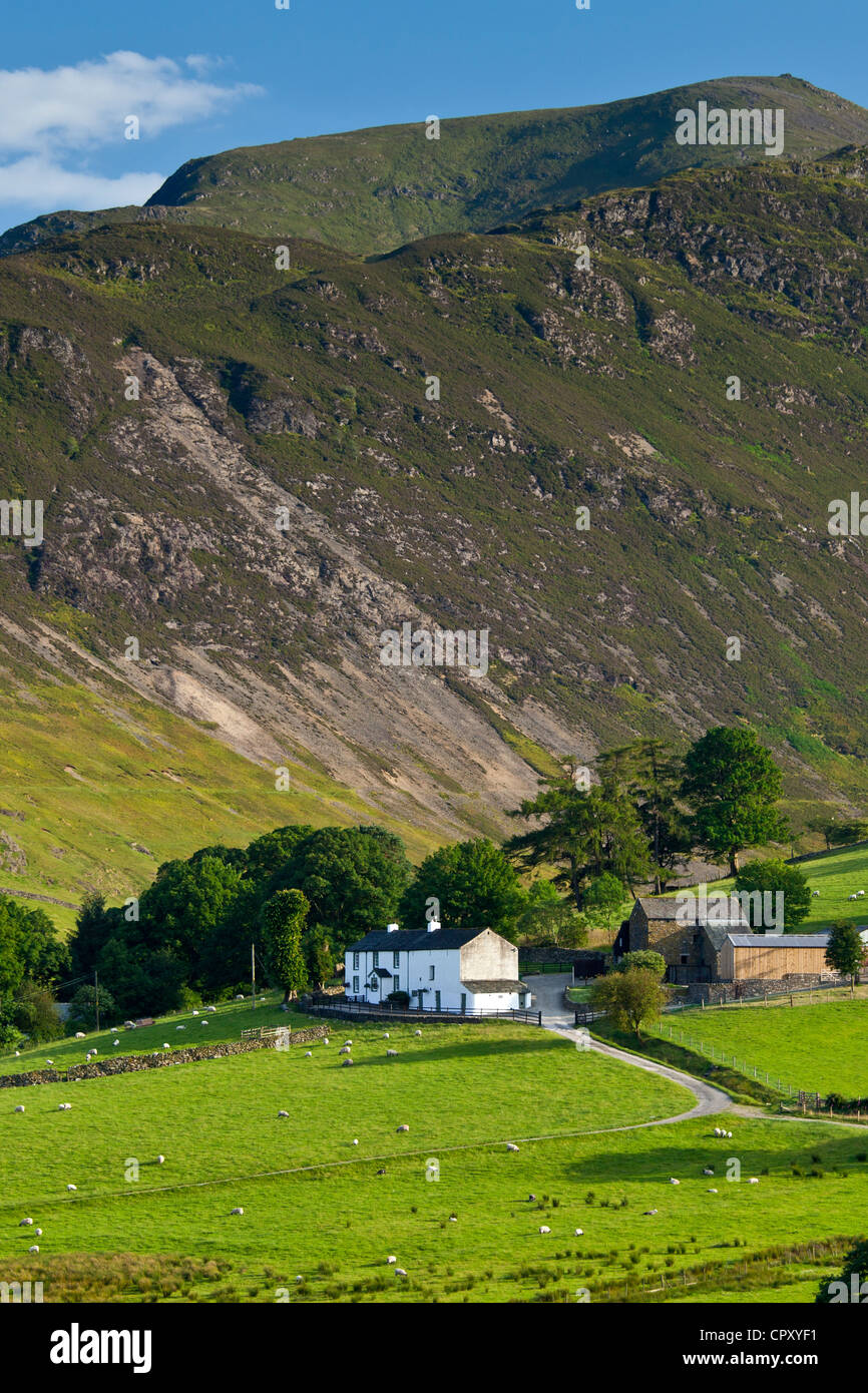 Hill farm in pastureland by Robinson and Scope End Fells, Cumbrian mountains in Lake District National Park, UK - Stock Image