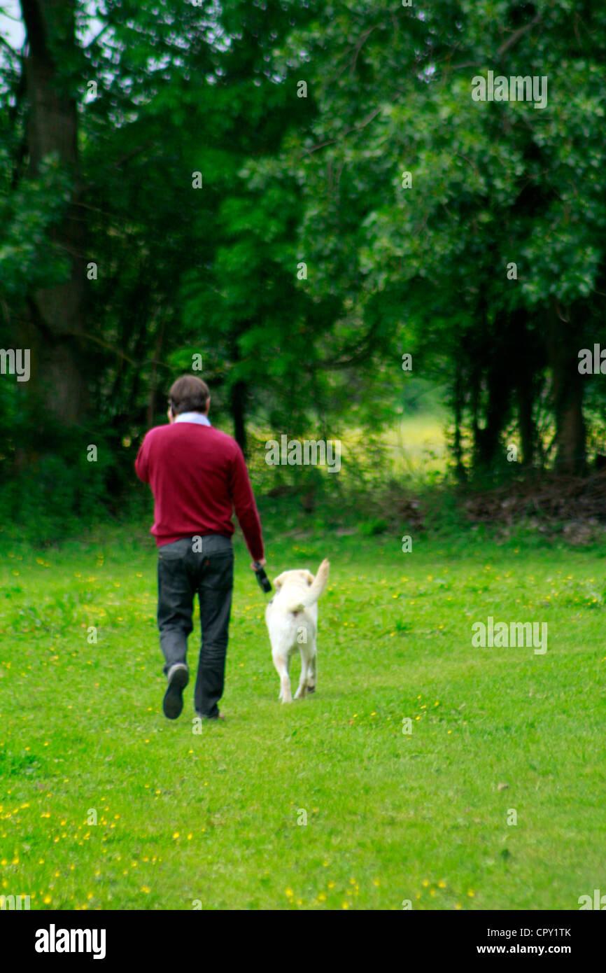 Man walking his dog at a lush green countryside farm Stock Photo
