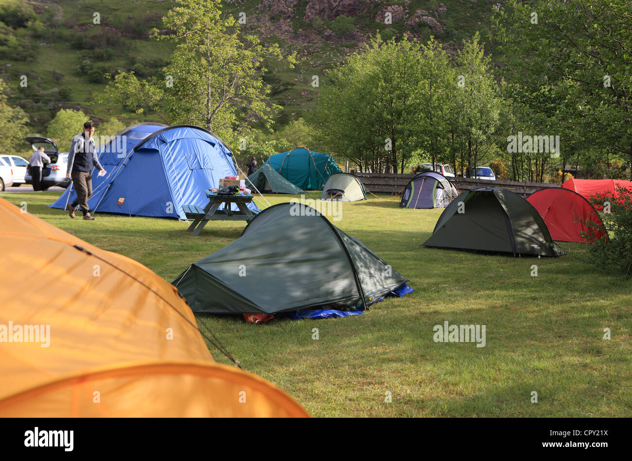 Tents at Shiel Bridge campsite in the Highlands of Scotland - Stock Image