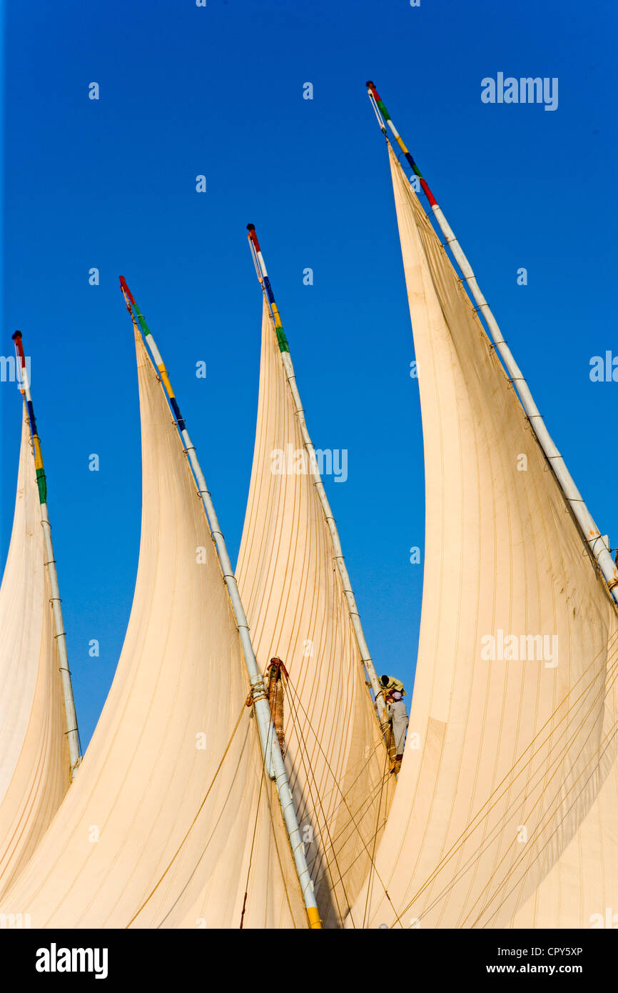 Egypt, Upper Egypt, Nile Valley, surroundings of Luxor, twin masted large feluccas known as sandals, they were used Stock Photo