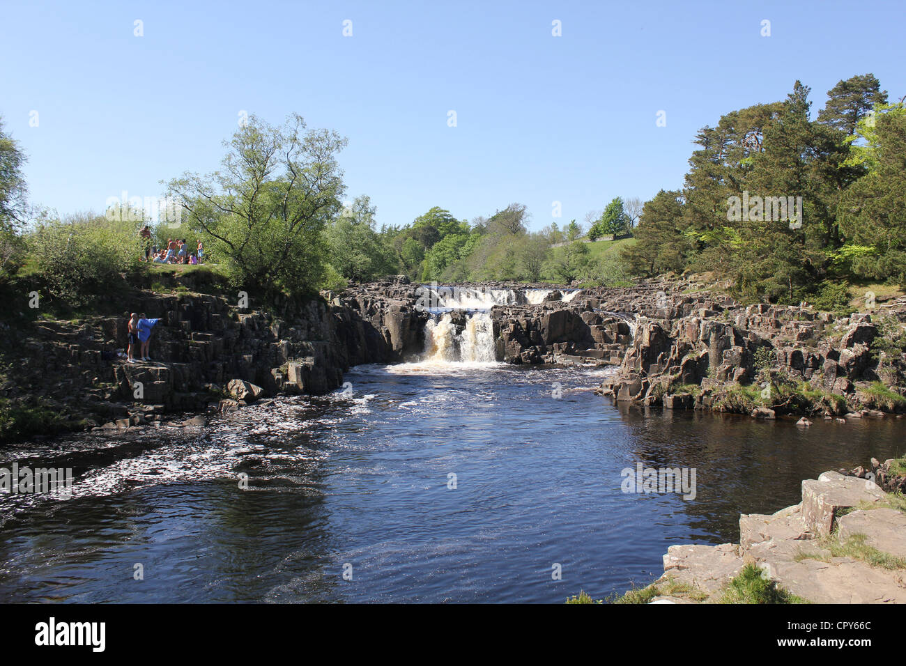 Teesdale scenes, North East England. 26th May 2012 - Low Force Waterfalls - about 1.1/4 mls downstream of High Force - Stock Image