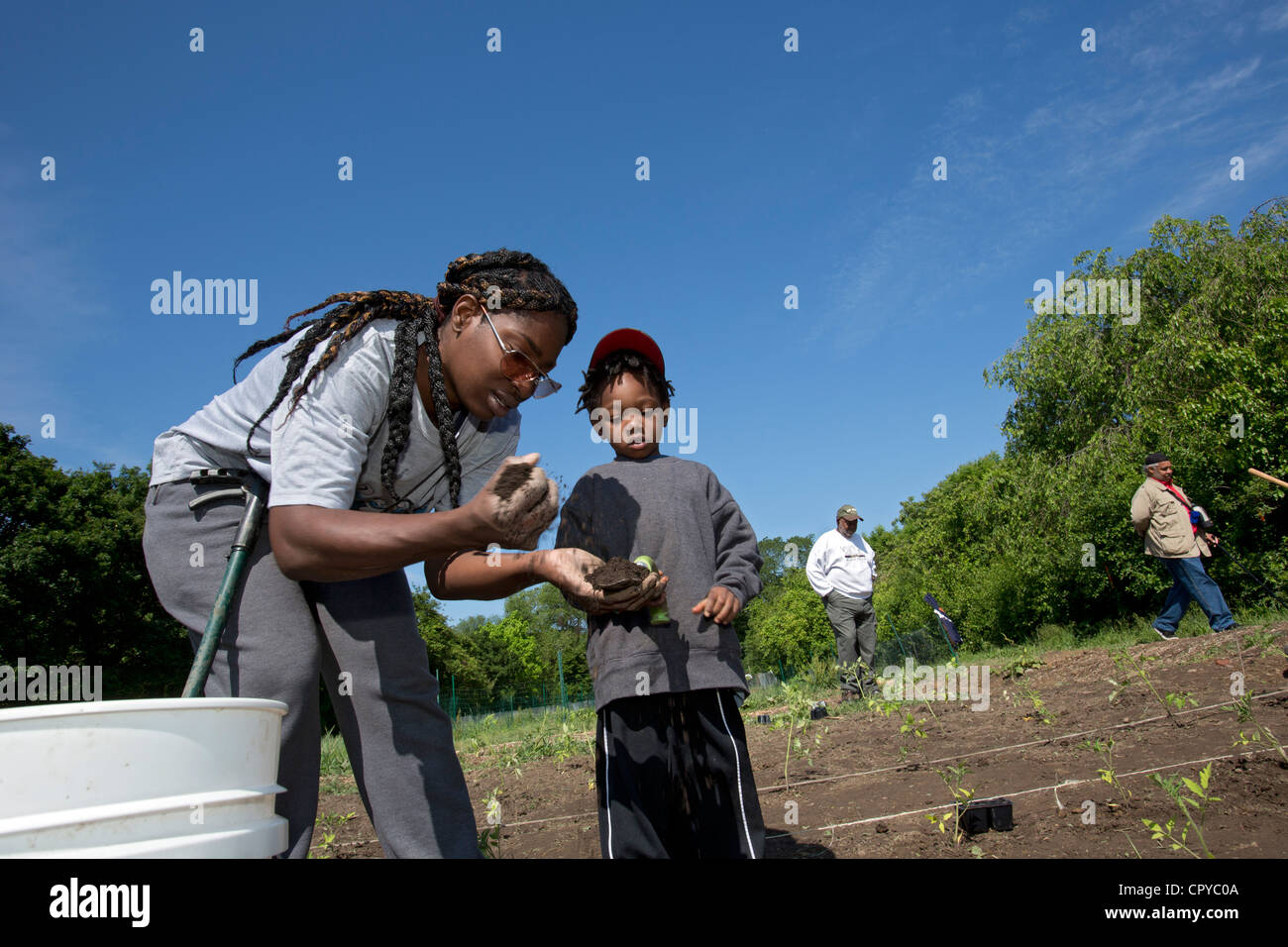 Volunteers plant tomatoes at D-Town Farm, a urban farm in Detroit's Rouge Park. - Stock Image