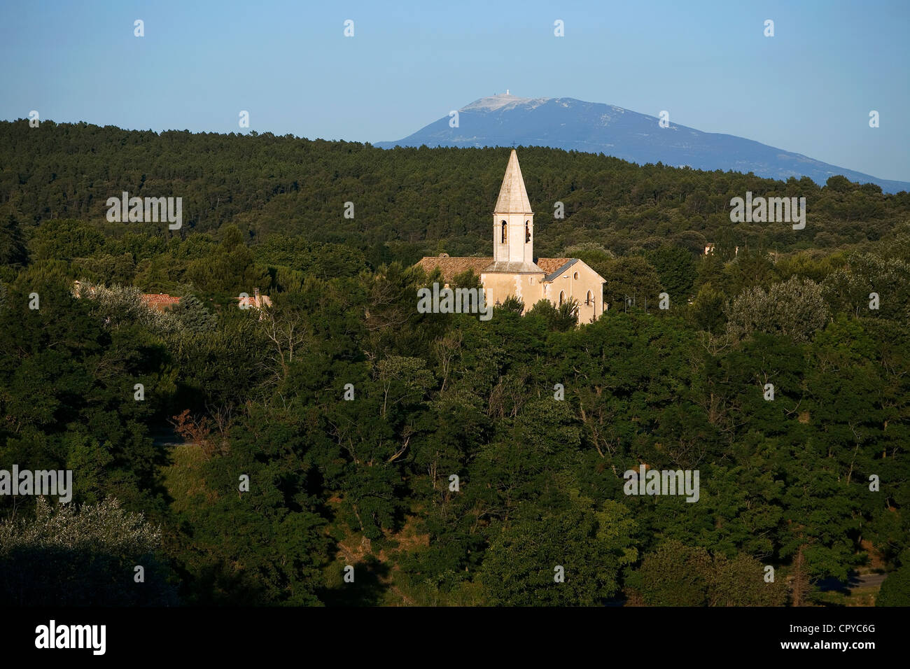 France, Vaucluse, near Bollene, Eglise Saint Pierre (St Peter Church), in the background, the Mont Ventoux - Stock Image